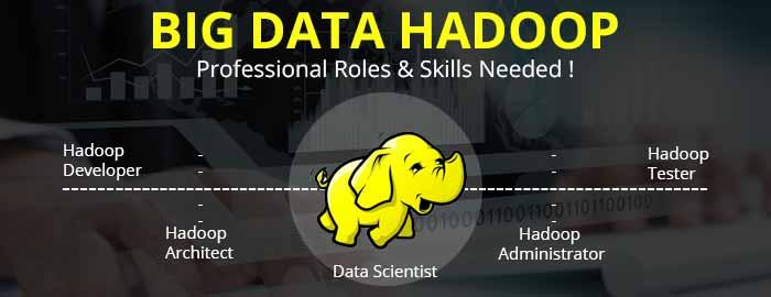 Big Data Hadoop Professionals – Job Responsibilities & Skills!