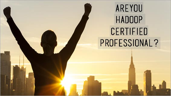 How Hadoop Certification is your Passport to High-paying Jobs ...