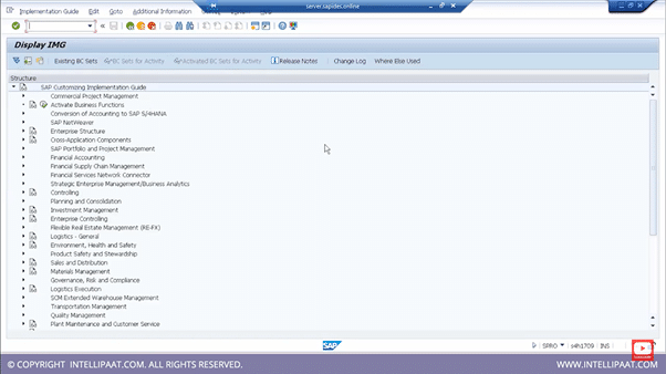 Demo on Creating New Company & Assigning a Company Code to it step 1