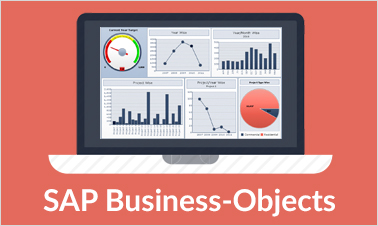 business objects training Image