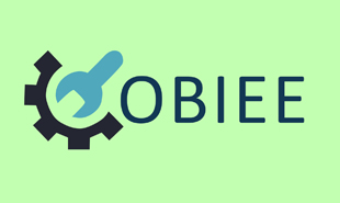 obiee training and certification course