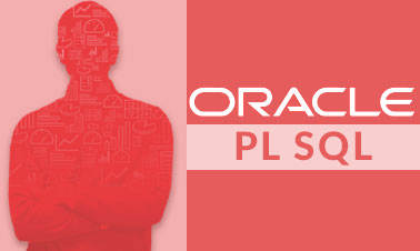 Oracle PL SQL Training And Certification Image