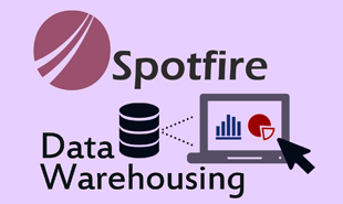 spotfire data warehousing training