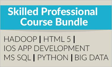 skilled professional course bundle