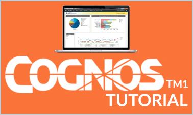 cognos tm1 tutorial