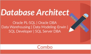 database architect training