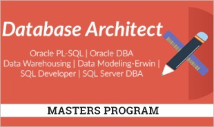 Database Architect Training - Combo Course