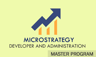 microstrategy developer and administration training