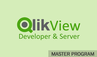 qlikview developer and server training