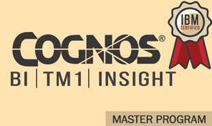 cognos bi tm1 insight training combo course