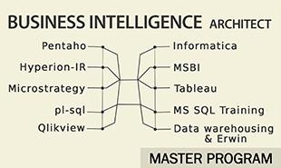 Business Intelligence Architect Master