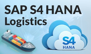 SAP S4 HANA Logistcs
