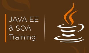 java soa Training