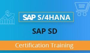SAP SD Training Certification Course - SAP Sales & Distribution
