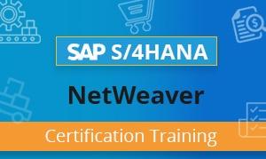 SAP NetWeaver Certification Training
