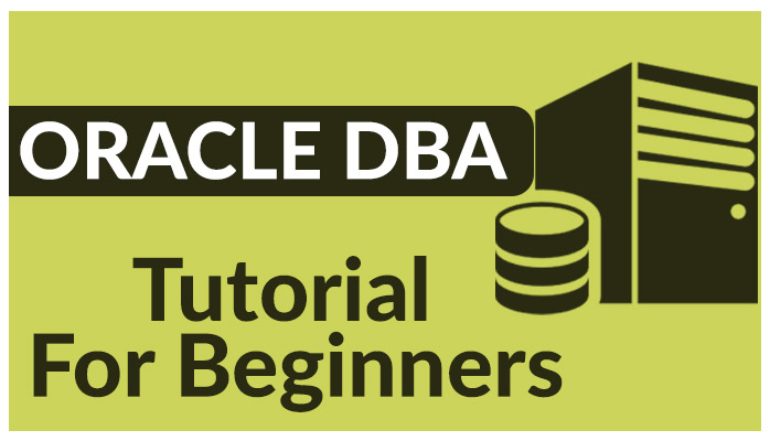 Oracle DBA Tutorial for Beginners